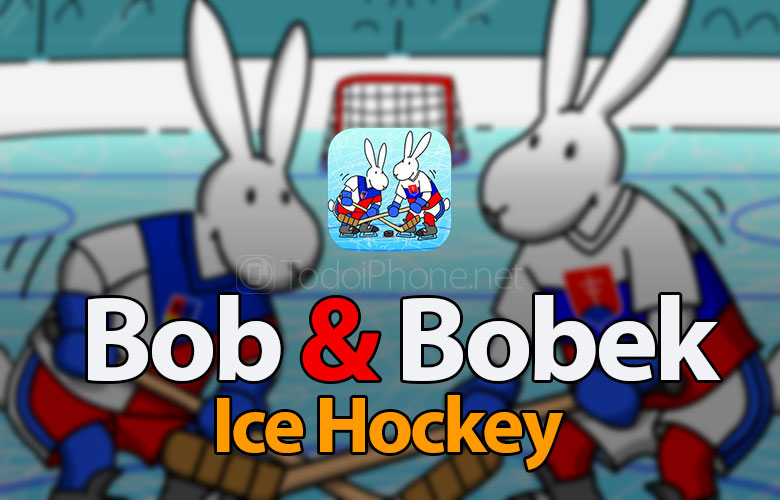 bob-and-bobek-ice-hockey-review