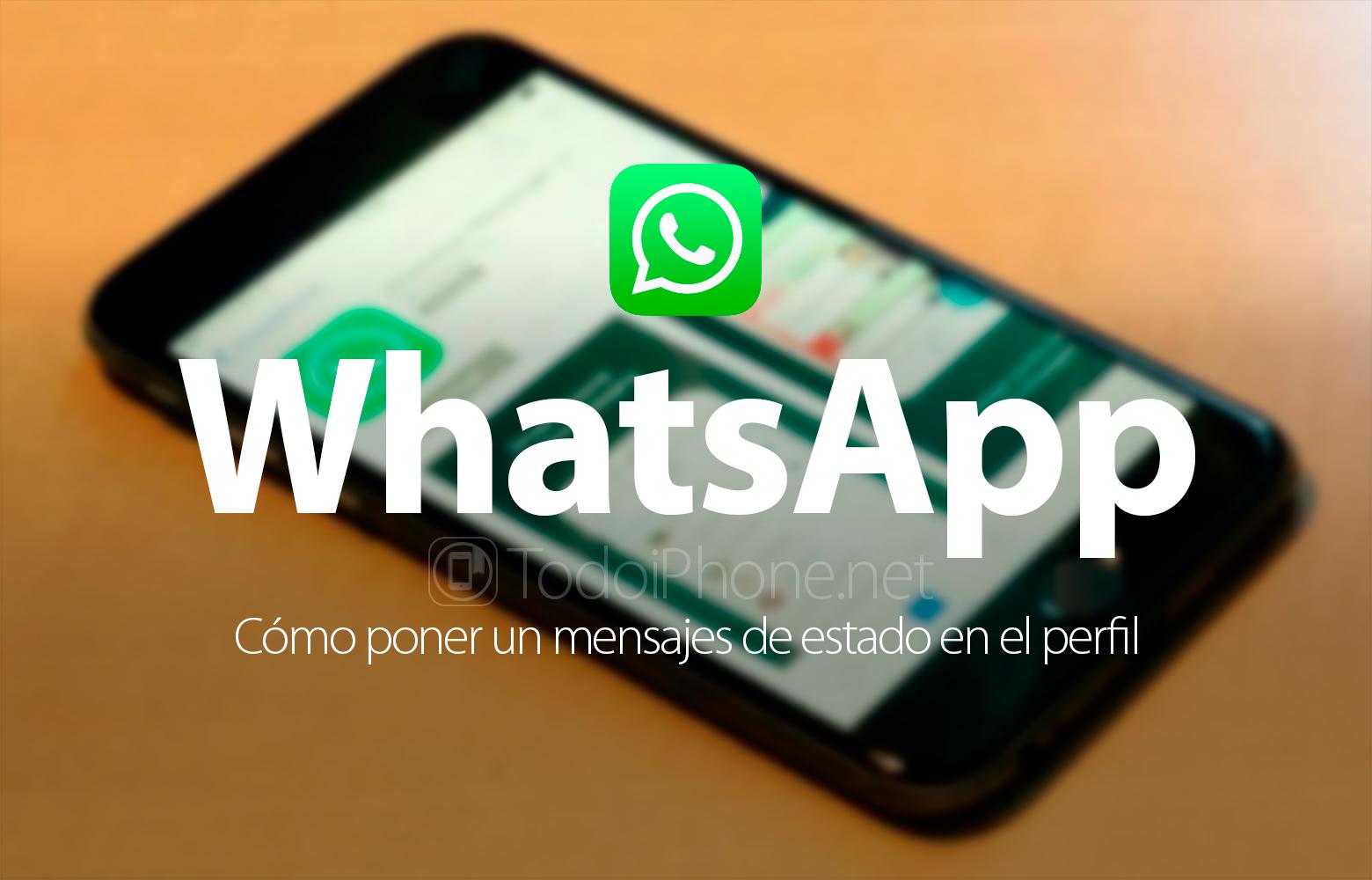 C mo poner un mensaje de estado en el perfil de whatsapp for Como poner un vivero